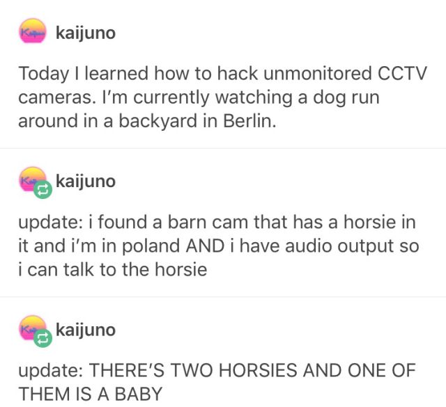Computer Hacker Uses His Evil Powers For Good (4 pics)