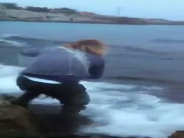 Net Fishing Big Catch - in The Sea