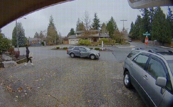 Karma Vs Thieves (15 gifs)