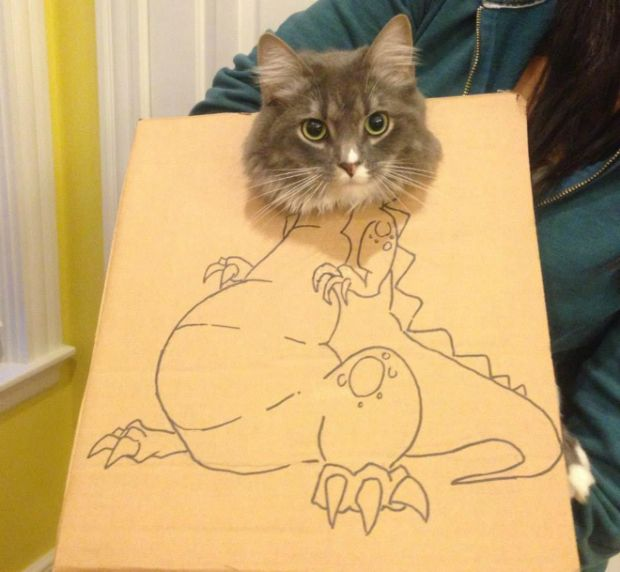 Pet Cardboard Box Dinosaurification (18 pics)