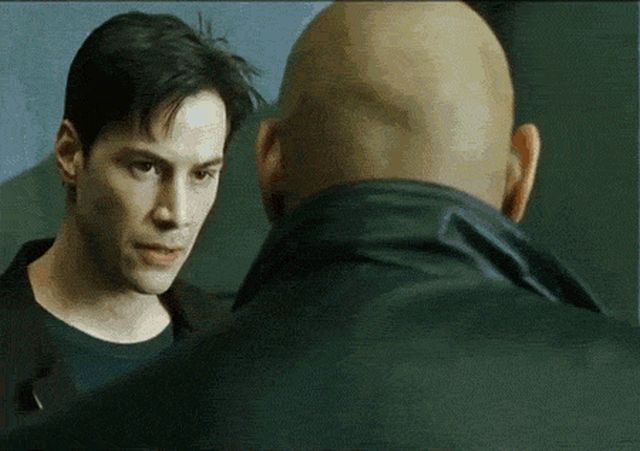 Funny Combined GIFs (15 gifs)