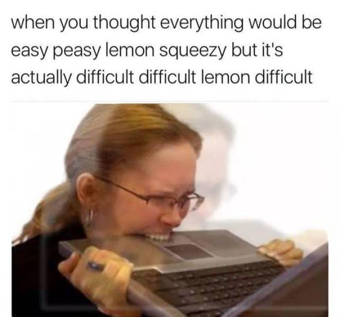 Fresh Memes (50 pics)