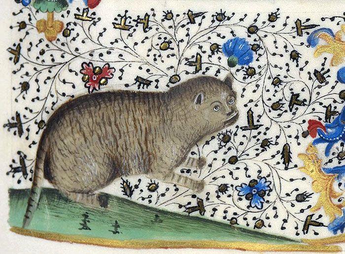 Medieval Cat Paintings (25 pics)