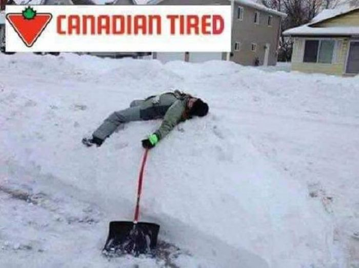 Only In Canada (49 pics)