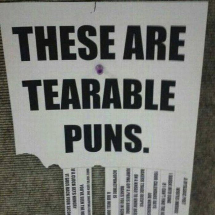 Funny Puns (29 pics)