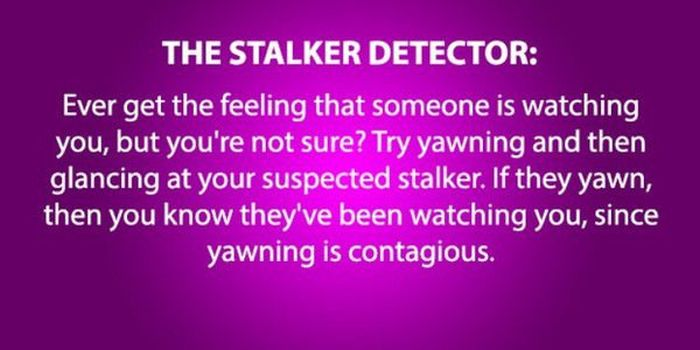 How To Be A Manipulator (15 pics)