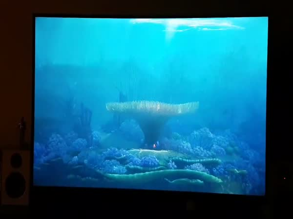 The End Of 'Finding Dory' On Swedens Netflix Is By Far The Greatest Movie Moment In Cinema History