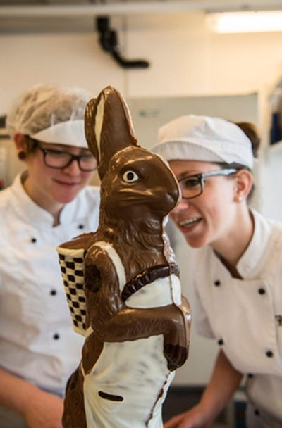 Large Chocolate Bunny (6 pics)
