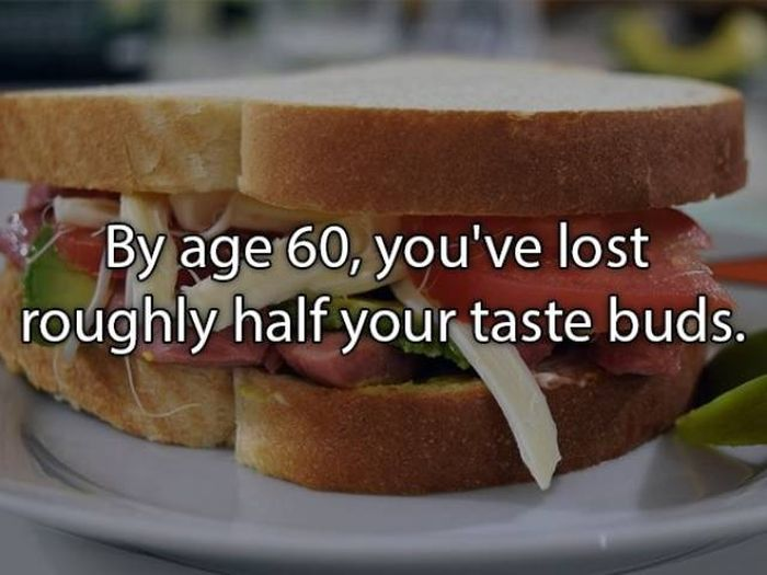 Unbelievable Facts (16 pics)