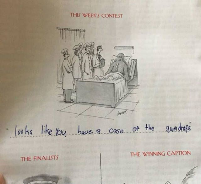 That Family Surely Has Some Incredible Talent In Writing Cartoon Captions (15 pics)