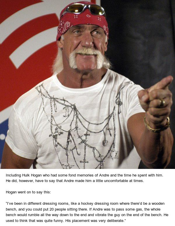 Hulk Hogan Shares Story About Andre The Giant And His Massive Farts (4 pics)