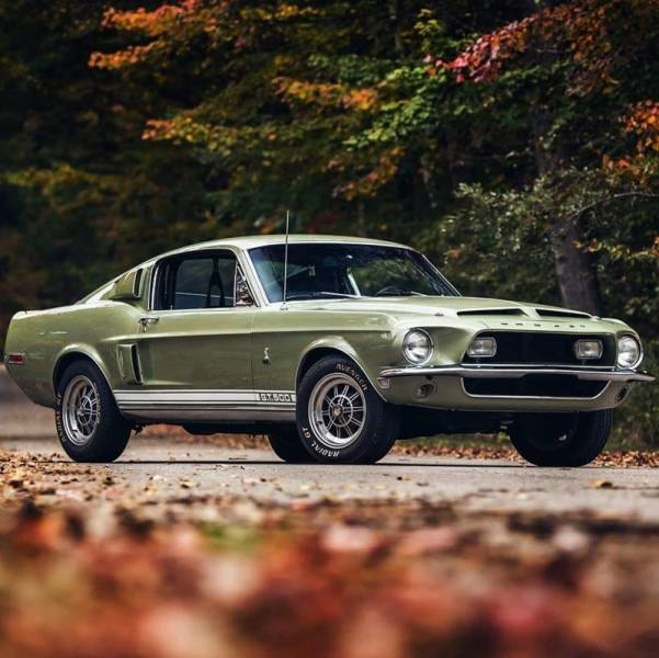 Beautiful Muscle Cars (25 pics)
