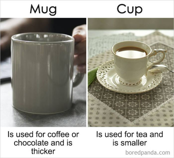 The Differences Between Similar Things (39 pics)