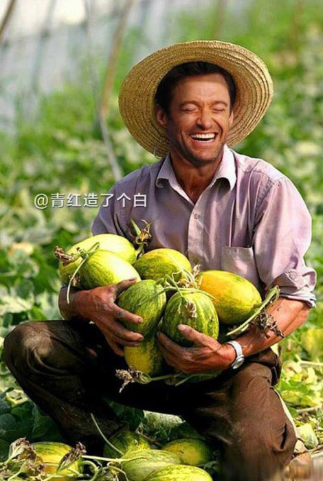 Celebrities As Chinese Farmers (15 pics)