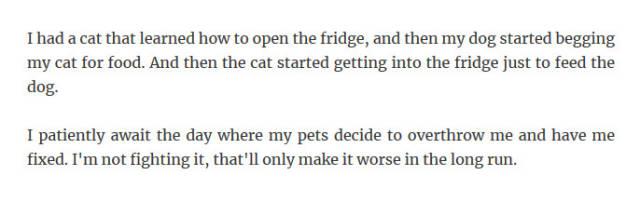 Pets Are Smart (35 pics)