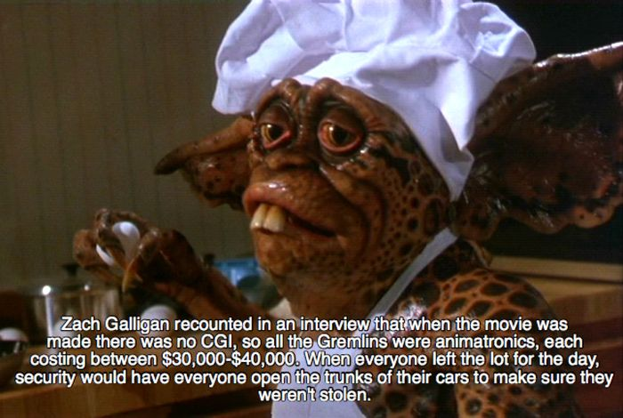 Facts About The Gremlins (20 pics)
