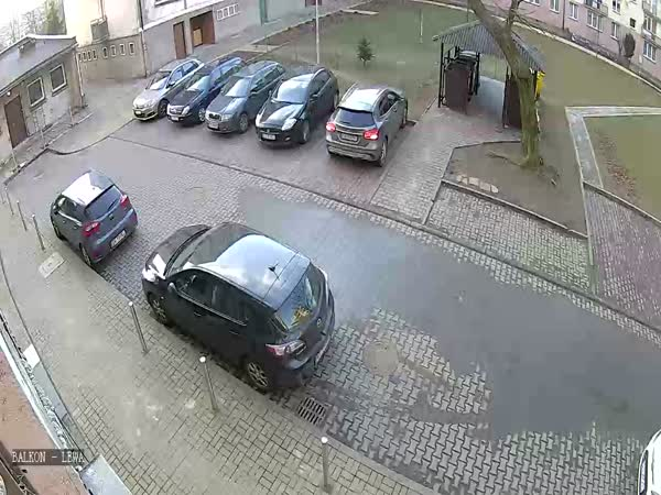 Car Parking Gone Wrong