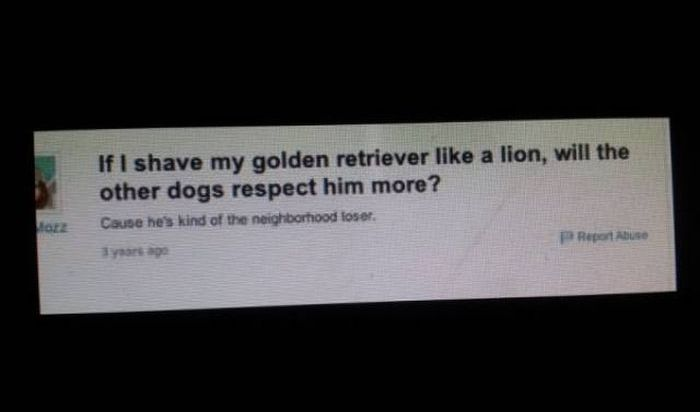 Funny Moments On Yahoo Answers (32 pics)