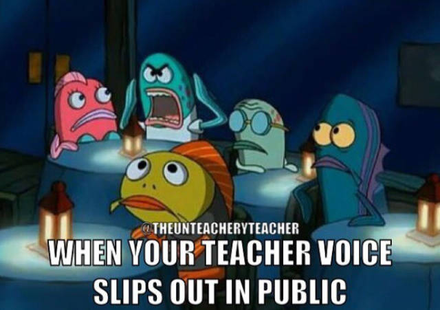 Memes By Teachers And About Them (66 pics)
