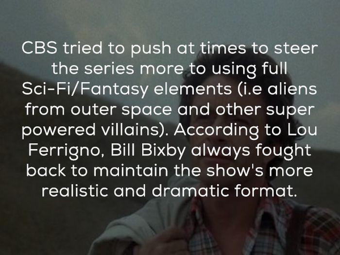 Hulk TV Show Facts (24 pics)