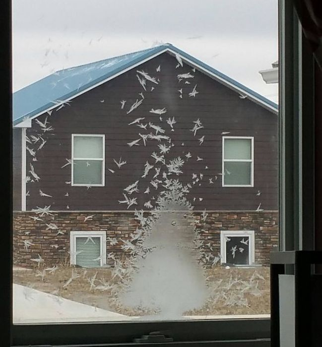 Times Accidental Art Was Better Than Your Actual Art (40 pics)