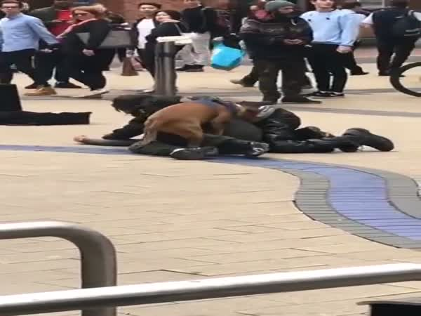 Dog Has His Own 2 Cents In A Drunk Fight