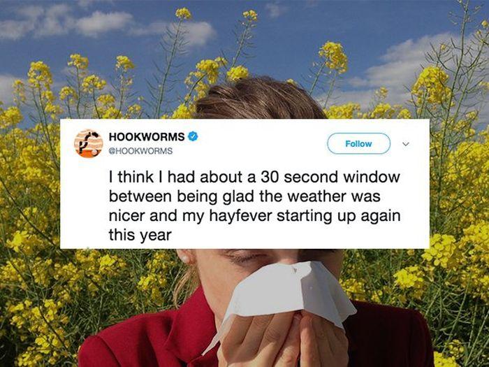 Allergy Season Memes (26 pics)
