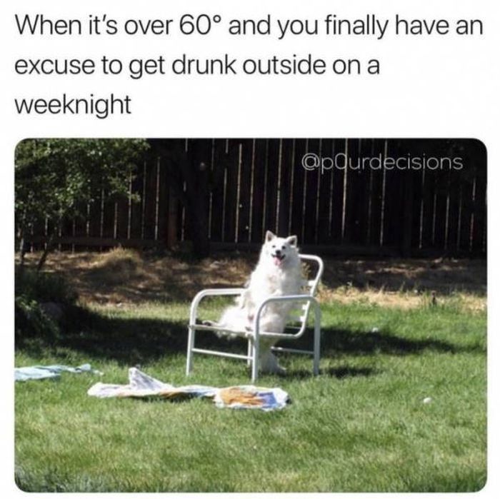 Funny Memes (49 pics)