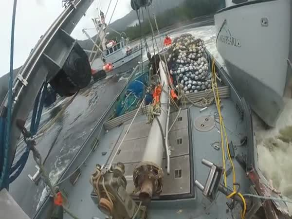 Fishing Boat Defends Its Turf
