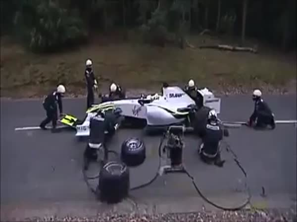 F1 Pitstop Bear Attack