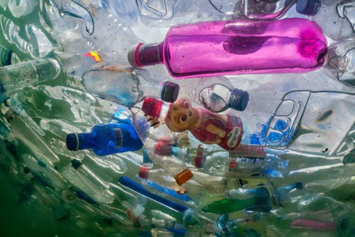 Plastic Is Harmful For Our Planet (16 pics)