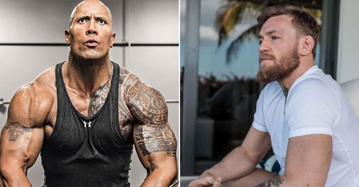 The Rock And Conor McGregor Had A Small Talk Online (3 pics)