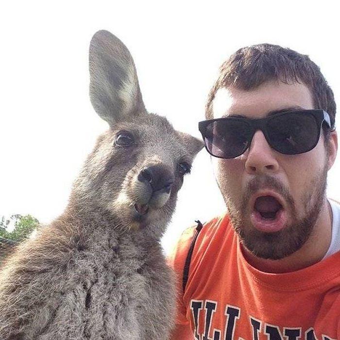 Welcome To Australia (37 pics)