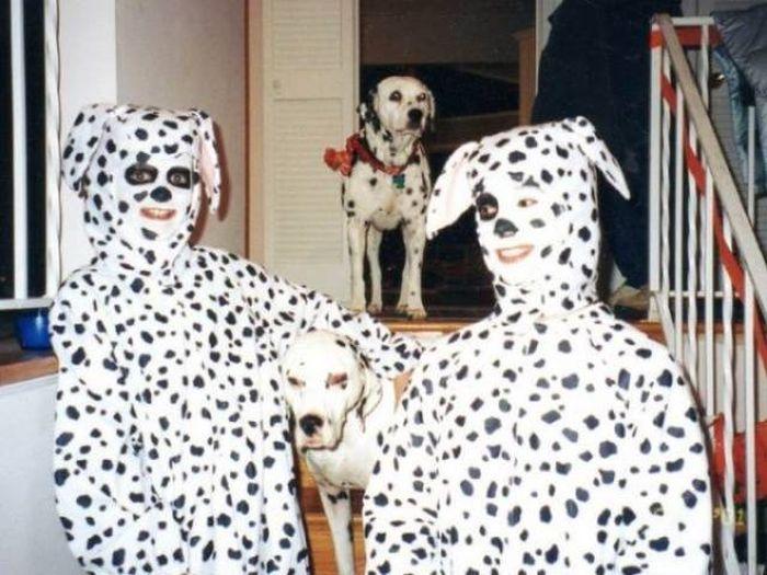 Funny Animals (60 pics)