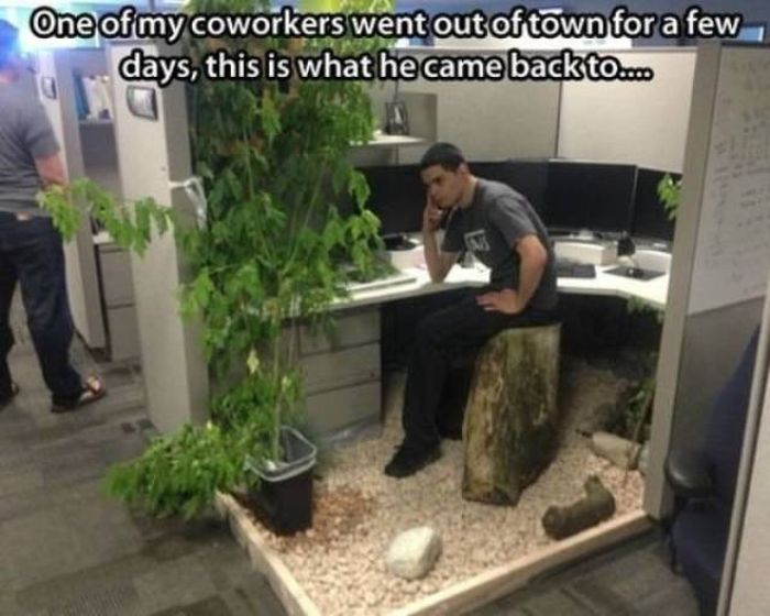 How To Have Fun At Work (41 pics)
