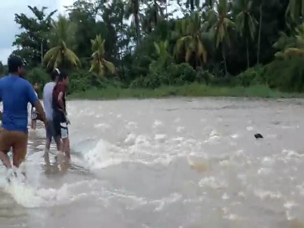 Locals Form Human Chain To Save Dog From Flash Flood