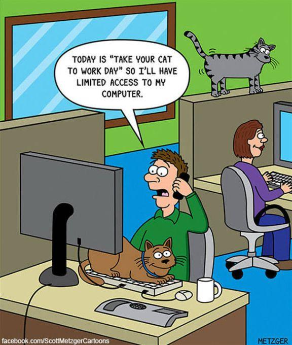 Funny Cat Cartoons (38 pics)