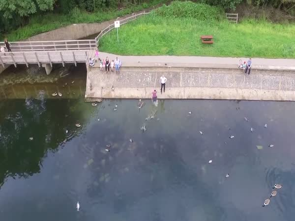 Man Jumps in a Lake to Save His Drone