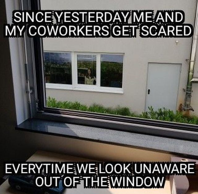 The Window War (4 pics)