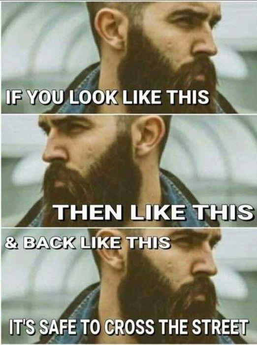 Good Memes (21 pics)