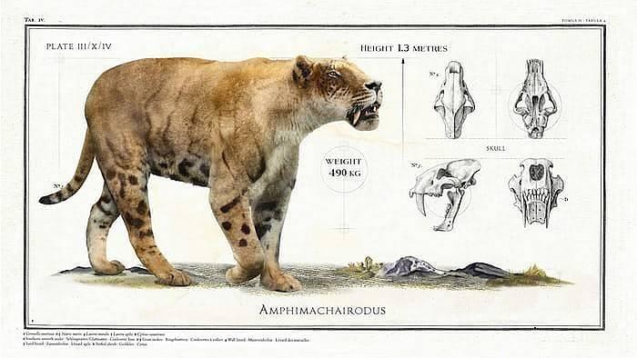 Ancient Giant Animals (8 pics)