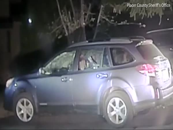 Placer County Sheriff Breaking Car Window To Let a Bear Out