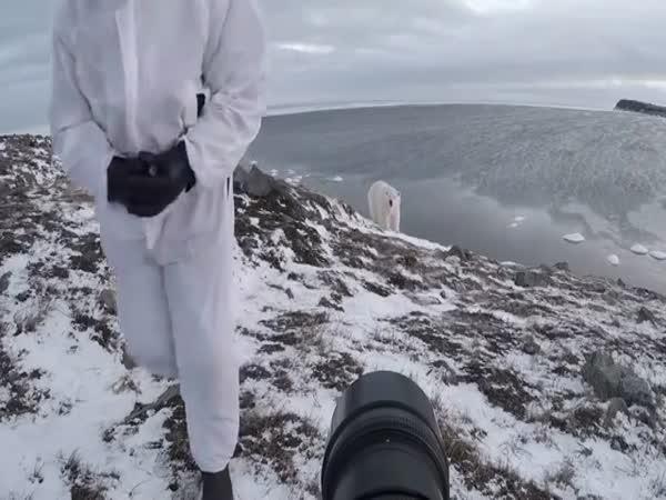 Polar Bear Chases Photographer