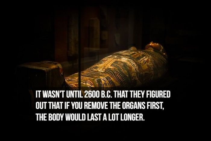 Interesting Facts About Mummies (17 pics)