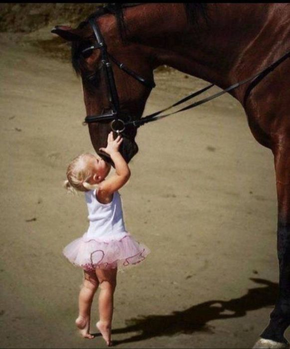 When A Picture Says More Than Just A Thousand Words (47 pics)