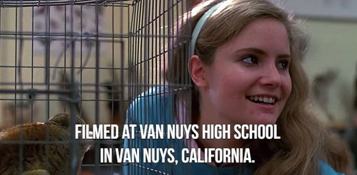 """Facts About """"Fast Times"""" (18 pics)"""