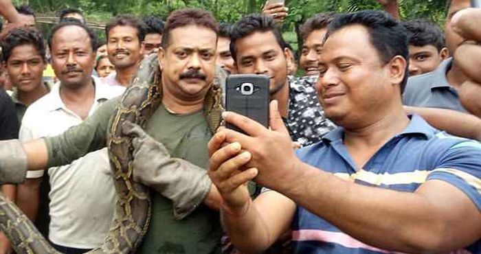 That's Why You Shouldn't Take Photos With Pythons (5 pics)