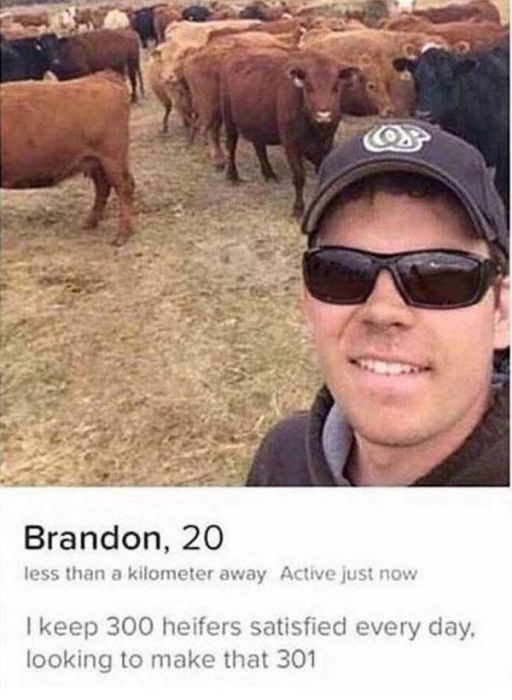 Only On Tinder (30 pics)