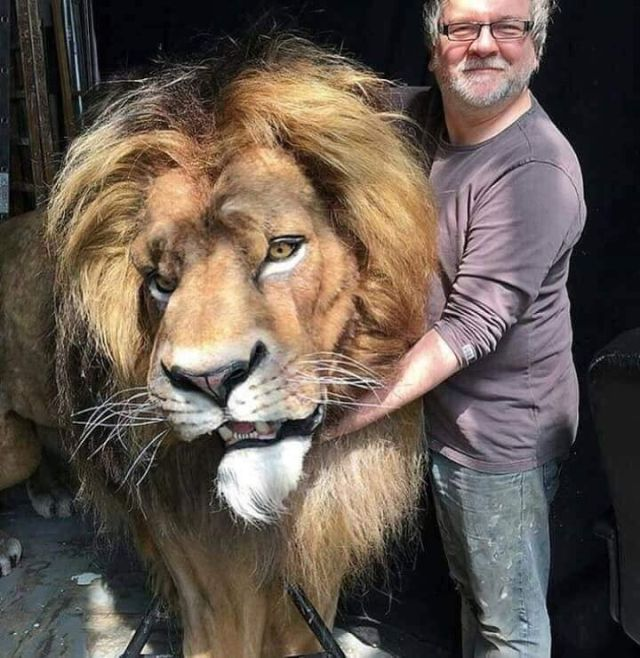 Mufasa Animatronic Model From Live Action Lion King Remake (4 pics)