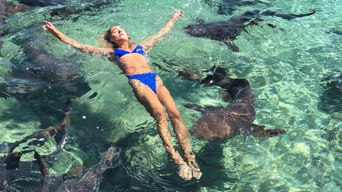 Model Bitten by Shark While Taking Photos in Bahamas (5 pics)